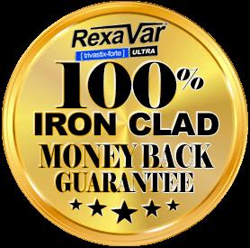 ironclad 1